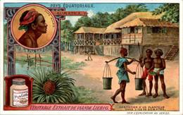 CHROMO LIEBIG - Pays Equatoriaux Sumatra Série Française N°1054 C) - Année 1912 TB.Etat - Liebig