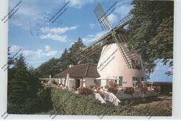 WINDMÜHLE / Mill / Molen / Moulin - HORN - BAD MEINBERG - Molinos De Viento