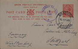 ENTIER POSTAL De 1919 - 1 D. Sur Carte Postale Union Of South Afrika Oblitération OMARURU (cachet Passed Censor) - Cartas