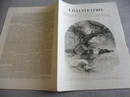 L'ILLUSTRATION 25 DÉCEMBRE 1886- LES TAUREAUX DE CAMARGUE-THÉÂTRE  LA PORTE SAINT MARTIN-MASSACRE ÉQUIPAGE COTE D'ADEN - 1850 - 1899
