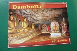 Q13/  DAMBULLA ROCK TEMPLE SRI LANKA CEYLON ASIE  TIMBREE  DIMENSION 16.5 X 11.5 - Sri Lanka (Ceylon)
