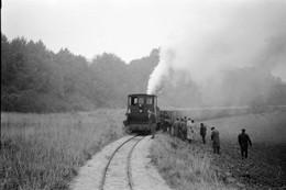 Maizy (Aisne). Chemin De Fer Betteravier De La Sucrerie. Cliché Jacques Bazin. 13-10-1962 - Eisenbahnen