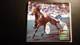Pochette Plastique Pour Tickets PMU N° 2 - Années 2000-2005 - Equitation
