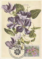 Fleurs -  Clématites - Maximum Cards