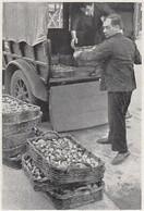 E2207 Venditore Di Funghi - 1934 Stampa Epoca - Vintage Print - Stampe & Incisioni