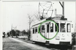 Hasselt : Tram Lijn Hasselt - Houthalen - Beringen(Mijn) --- 1955 - Hasselt