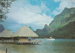Moorea Bateau Arrivée Du Kéké II Dans La Baie De Paopao - French Polynesia