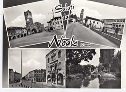NOALE-VENEZIA-SALUTI DA..4 VEDUTINE-CARTOLINA VERA FOTOGRAFIA-NON VIAGGIATA-1950-1958 - Venezia
