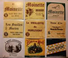 Bieretiketten Biere Etiquette Brouwerij Dupont Tourpes X9  #A6.33 - Bier