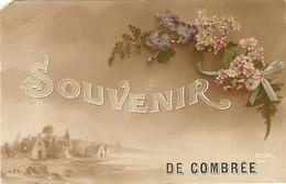 49 - Souvenir De COMBREE    291 - Autres Communes