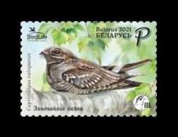 Belarus 2021 Mih. 1401 Fauna. Bird Of The Year. European Nightjar MNH ** - Belarus