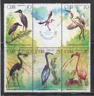 Cuba 2020 Water Birds, Aves Acuaticas 5v MNH - Storks & Long-legged Wading Birds