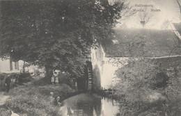 Huldenberg , ( Terlanen , Overijse , Ottenburg ),  Moulin  ,  Molen , Watermolen ,moulin à Eau , Roue - Huldenberg