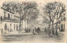 CPA Afrique Algérie Tizi Ouzou Rue Principale Hotel Café Fabre Boucherie - Tizi Ouzou