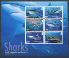 295 - OCEAN INDIEN 2012 - Yvert BF 41 - Requin Shark - Neuf **(MNH) Sans Charniere - British Indian Ocean Territory (BIOT)
