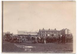 C.1900 Johannesburg -  Photo Wagon Attelage Voiture à Boeufs  Market Marché South Africa - Ancianas (antes De 1900)