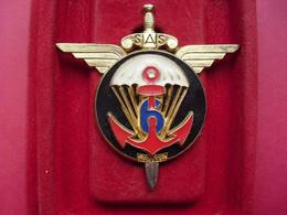 6° Régiment De Parachutistes D'Infanterie De Marine  ( DELSART , Relief Avec  Devise ,variante ) - Hueste