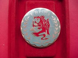 6° Rég. Para. D'Inf. De Marine  /  1° Compagnie LIBAN  1979 -1980 - Hueste