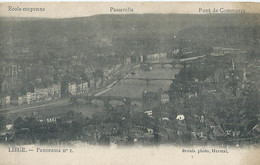 Luik - Liège - Panorama No 1 - Ecole Moyenne - Passerelle - Pont De Commerce - Photo Breuls, Herstal - Luik