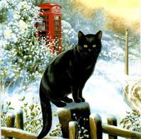 Chat De Noël - Zwarte Poes Op Hek - Black Cat - Katze - Chats
