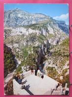 83 - Grand Canyon Du Verdon - Belvédère De La Mescla - R/verso - Unclassified