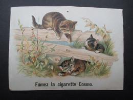 CHROMO (V2102) CIGARETTES COSMO (2 Vues) Fumez La Cigarette Cosmo - Non Classificati