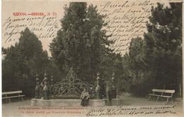 UKRAINE  -  ODESSA : Le Chêne Planté Par Empereur Alexandre II - Ukraine
