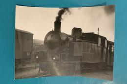Locomotive MCL - Photo Train Gare - Italie Società Mediterranea Ferrovie Calabro Lucane FCL Loc Loco Vapeur Voie étroite - Trains