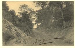 A0019[Postkaarten] Lot Van 17 Postkaarten Genval [Rixensart] Gevarieerd Lot [le Lac Chemin De Malaise La Pêche Panorama - Rixensart