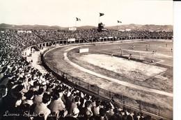 08213  LIVORNO STADIO STADION - Livorno