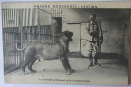Zirkus Tierdressur, Grande Menagerie Cinema, Dompteur Robert, 1900 ♥ (11336) - Other