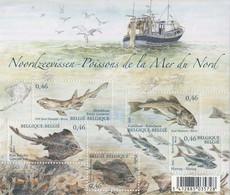 MDN-BK2-552 MINT ¤ BELGIE 2006 5w In Serie ¤ SEA ANIMALS - FISH - SEA LIFE - SEA MAMMALS - Fische