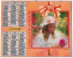 Calendrier 1993   Almanach Du Facteur Dep14  * - Big : 1991-00