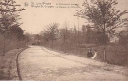 Sint-Joris-Winge-De Motbroeksche Steenweg. - Tielt-Winge