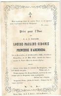 BRUXELLES - Louise Paline Princesse D'ARENBERG -°1820 Et +1853 - Santini