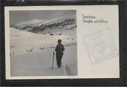 AK 0676  Innerkrems ( Kremsbrücke ) - Schönfeld Mit Klöbing / Verlag Klauer Um 1934 - Spittal An Der Drau