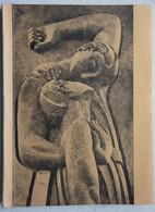 Boek 1914-18 Broeder Van Raemdonck Belgische Leger Ijzer Gesneuveld Te STEENSTRATE 1917 TEMSE 1897 WO1 - Guerra 1914-18