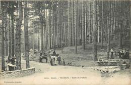 VEZZANI-forêt De Padula - Sonstige Gemeinden