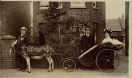 DORSET  BOURNEMOUTH  RPPC CART SOCIAL HISTORY ANE DONKEY EZEL ESEL MULES Donkeycollection - Sin Clasificación