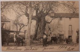RAMATUELLE - Place De L'Ormeau - Ramatuelle