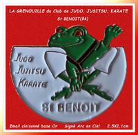 """SUPER PIN'S """"GRENOUILLE"""" : Du CLUB De JUDO, JUITSU, KARATE Du Club De La Ville De ST BENOIT Dans La VIENNE 2,5X2,1cm - Judo"""