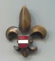 BOY SCOUT, Scoutisme, Eclaireur - AUSTRIA, Vintage Pin Badge, Abzeichen, Enamel - Associations