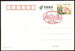 CHINA XingTai COVID-19 PMK(Prevent Salmon From Spreading The COVID Virus) - Enfermedades