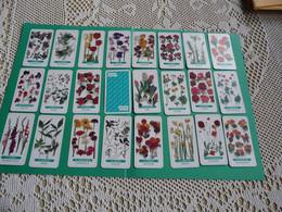 25 Cartes Publicitaire Femme Actuelle  Fleur Fleurs Flower  Playing Card - 32 Cards