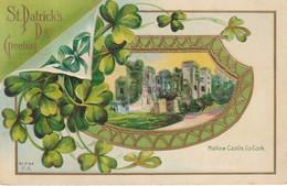 St. Patrick's Day Greeting  Mallow Castle, Cork - Saint-Patrick's Day