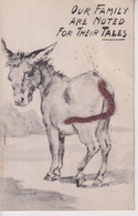 Our Family Are Noted For Thir Tales  ANE DONKEY EZEL ESEL MULES Donkeycollection - Altri