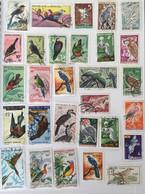 110 Timbres Oiseaux Birds Tous Pays - Colecciones & Series