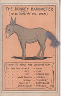 The Donkey Barometer To Be Hung In The Open   ANE DONKEY EZEL ESEL MULES Donkeycollection - Altri