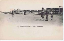 CHARENTE-MARITIME - CHATELAILLON - La Plage à Marée Basse ( Animation ) - Châtelaillon-Plage