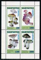 SALE  Russia ( Kamchatka ) Local Post 1997  Mushrooms  MNH - Champignons